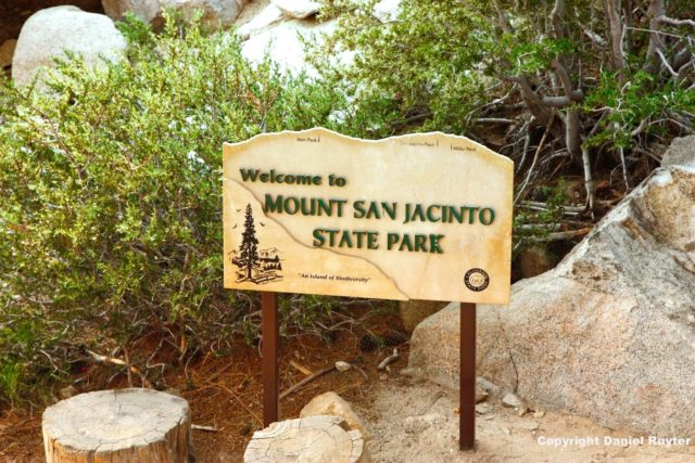 Palm Springs Aerial Tram Review - Mount San Jacinto State Park
