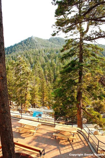 Palm Springs Aerial Tram Review - View Down the Mountain