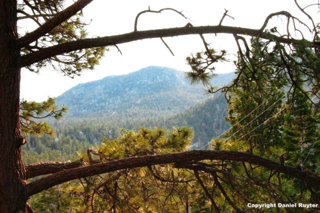 Palm Springs Aerial Tram Review - Amazing View from the Top