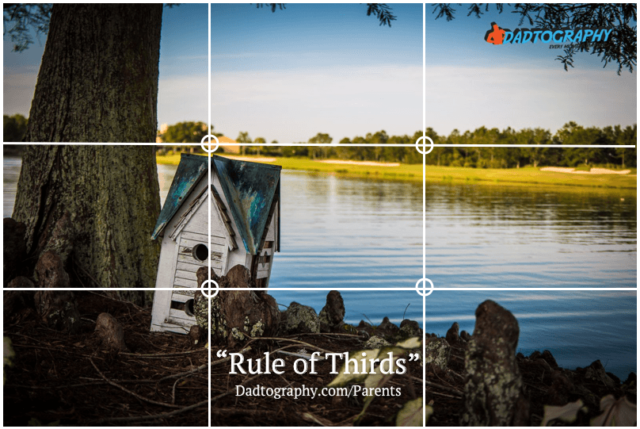 Rule of Thirds - Small Bird House