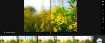 Luminar Before and After - Yellow Flowers Flowing