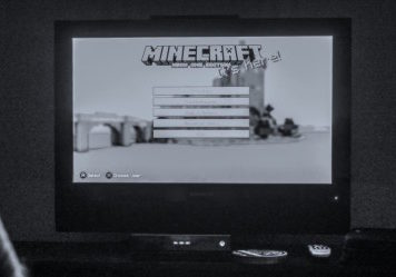 Minecraft Life Lessons BW